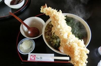 ジャンボ海老天ぷらうどん食べてきました!