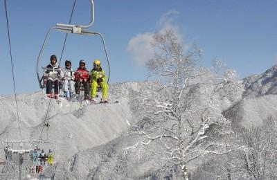 ほおのき平スキー場で白樺クルージングが出来ますよ♪