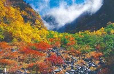 【飛騨高山の紅葉】飛騨高山エリア2019年紅葉スポット情報