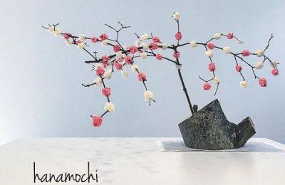 【飛騨高山】飛騨のお正月といえばこれ!皆楽しく良いお年を♪